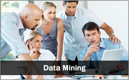 Services-Data-Mining-265px